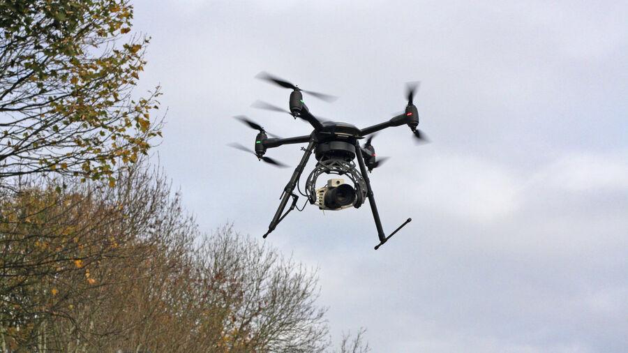 UAV Vogel Flying